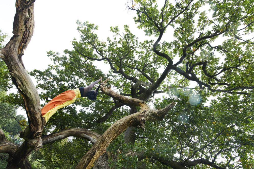 Tania Camara, Creative Exchange Lab artist in a tree